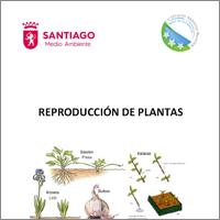 port_reproduccionplantas
