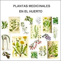 port_plantasmedicinales